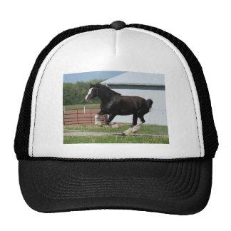 Black Clydesdale Trucker Hat