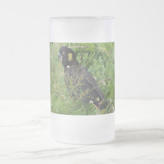 Black Cockatoo Frosted Glass Beer Mug