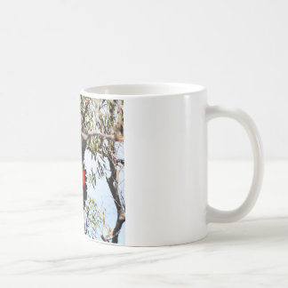 BLACK COCKATOO IN FLIGHT RURAL AUSTRALIA COFFEE MUG