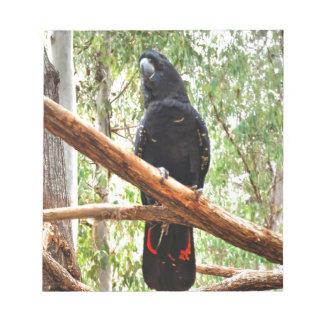 BLACK COCKATOO QUEENSLAND AUSTRALIA NOTEPAD