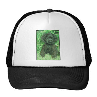 Black Cocker Spaniel Mesh Hat