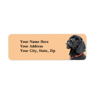 Black Cocker Spaniel Label