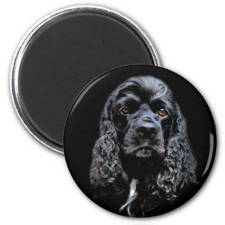 Black Cocker Spaniel Magnet