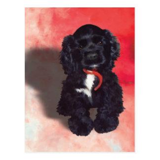 Black Cocker Spaniel Puppy - Abby Postcard