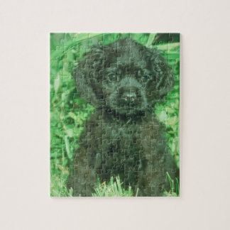 Black Cocker Spaniel Puppy Dog Puzzle