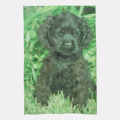 Black Cocker Spaniel Puppy Kitchen Towel