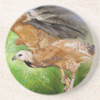 Black-collared Hawk Pastel Painting Coaster