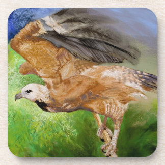 Black-collared Hawk Pastel Painting Coasters