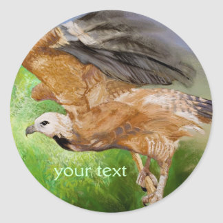 Black-collared Hawk Pastel Painting Classic Round Sticker