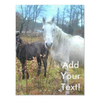 Black Colt White Horse Magnetic Card