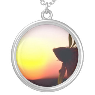 Black Coneflower before the setting sun, Quebec, C Pendant