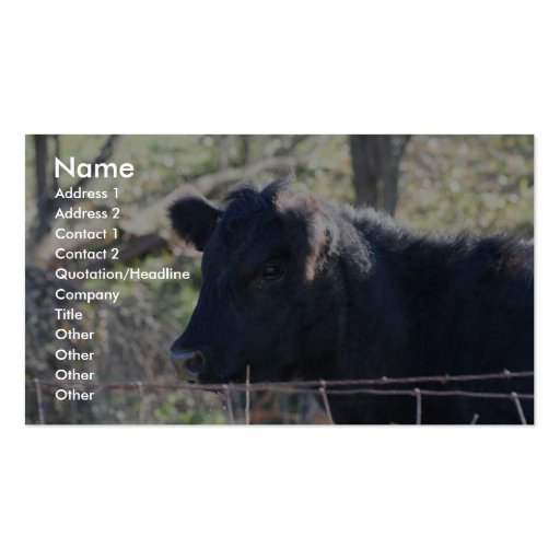 Black Cow Looking Out Of Fence Double-Sided Standard Business Cards (Pack Of 100)