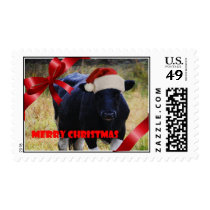 Black Cow Merry Christmas Postage