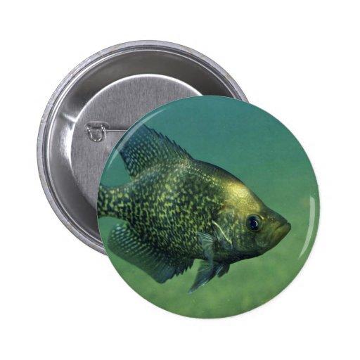Black crappie 2 inch round button