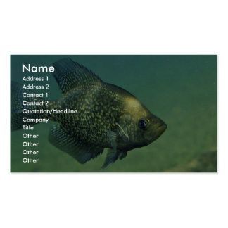 Black crappie business card