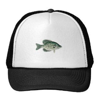 Black Crappie Mesh Hat