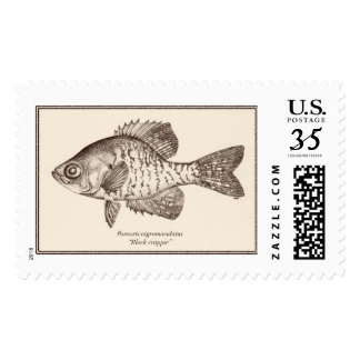 """Black crappie"" postage stamp"