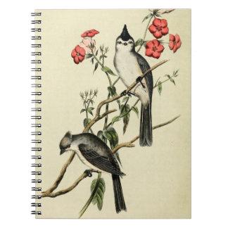 Black Crested Chickadee Note Books