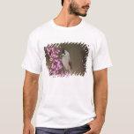Black-crested Titmouse, Baeolophus T-Shirt