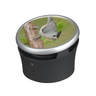Black-Crested Titmouse Bluetooth Speaker