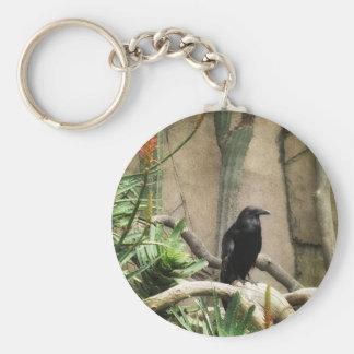 Black Crow Basic Round Button Keychain