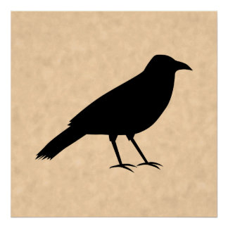 Black Crow Bird on a Parchment Pattern. Poster
