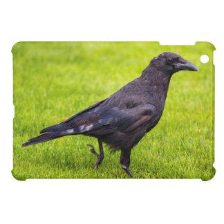Black crow case for the iPad mini
