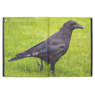"Black crow iPad pro 12.9"" case"