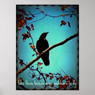 Black Crow On Tree Branch Original Photo Design Poster