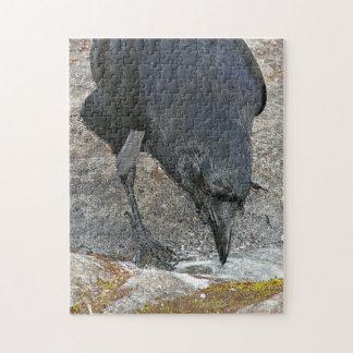 Black Crow Photo Jigsaw Puzzle