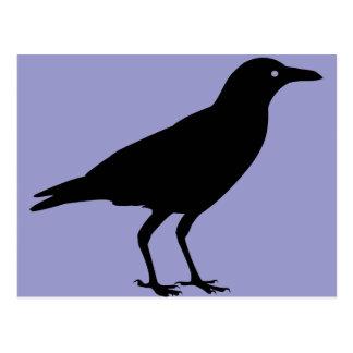 Black Crow Purple Halloween Postcard