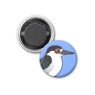 Black-crowned Night Heron 1 Inch Round Magnet