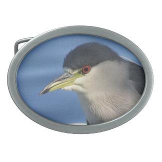 Black Crowned Night Heron Belt Buckles
