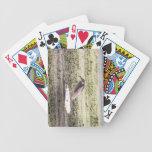 Black-crowned Night-Heron Bicycle Card Deck