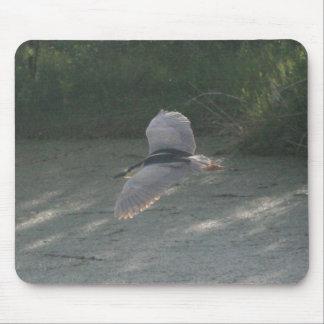 Black-Crowned Night-Heron Flying 2 Mousepad