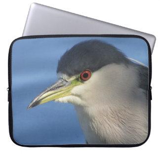Black Crowned Night Heron Computer Sleeve