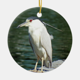 Black Crowned Night Heron Looking For A Meal Ceramic Ornament