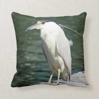 Black Crowned Night Heron Looking For A Meal Throw Pillow