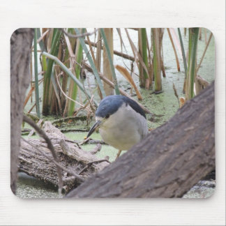Black Crowned Night Heron Male Mouse Pad