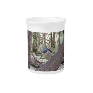 Black Crowned Night Heron Male Drink Pitcher