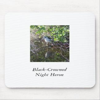 Black-Crowned Night Heron Mouse Pads