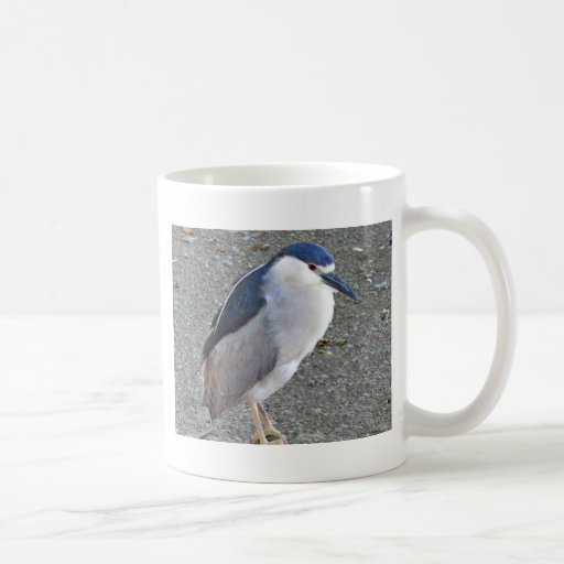 Black-crowned night heron mugs
