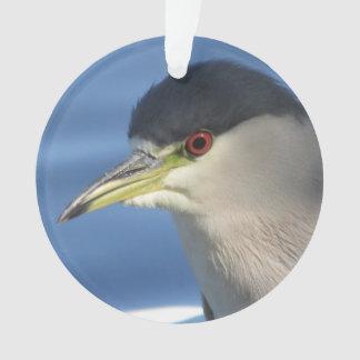 Black Crowned Night Heron Ornament