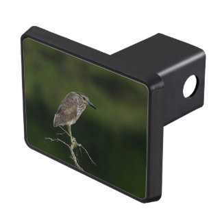 Black Crowned Night Heron Tow Hitch Cover