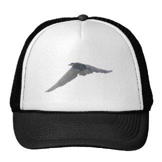 Black-Crowned Night-Heron Trucker Hat