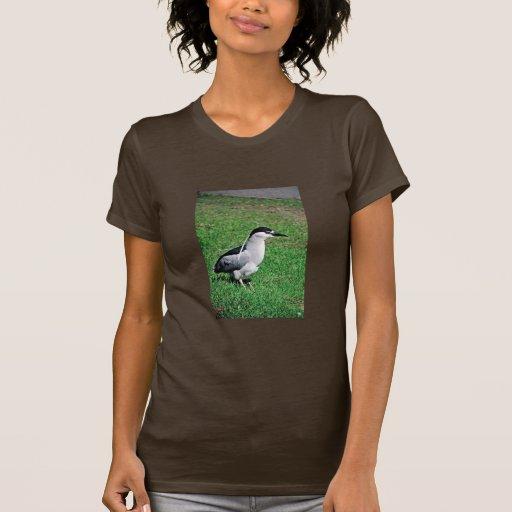 Black-crowned night heron tshirts