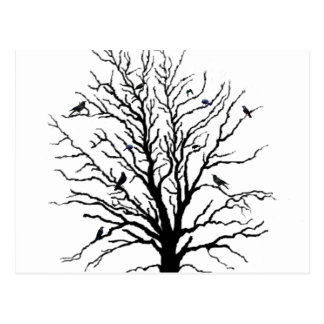 Black Crows Gathering in Tree Postcard