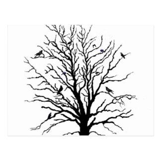 Black Crows Gathering in Tree Postcard
