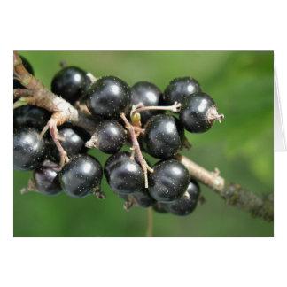 Black Currants greeting card