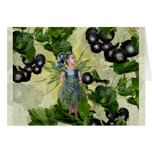 Black Current Fairy Card